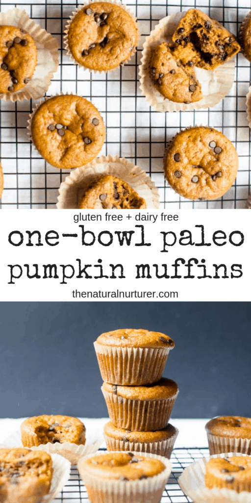 These One-Bowl Paleo Pumpkin Chocolate Chip Muffins are super easy to make and so delicious! Gluten free and dairy free, they are the perfect snack , breakfast or healthier dessert!
