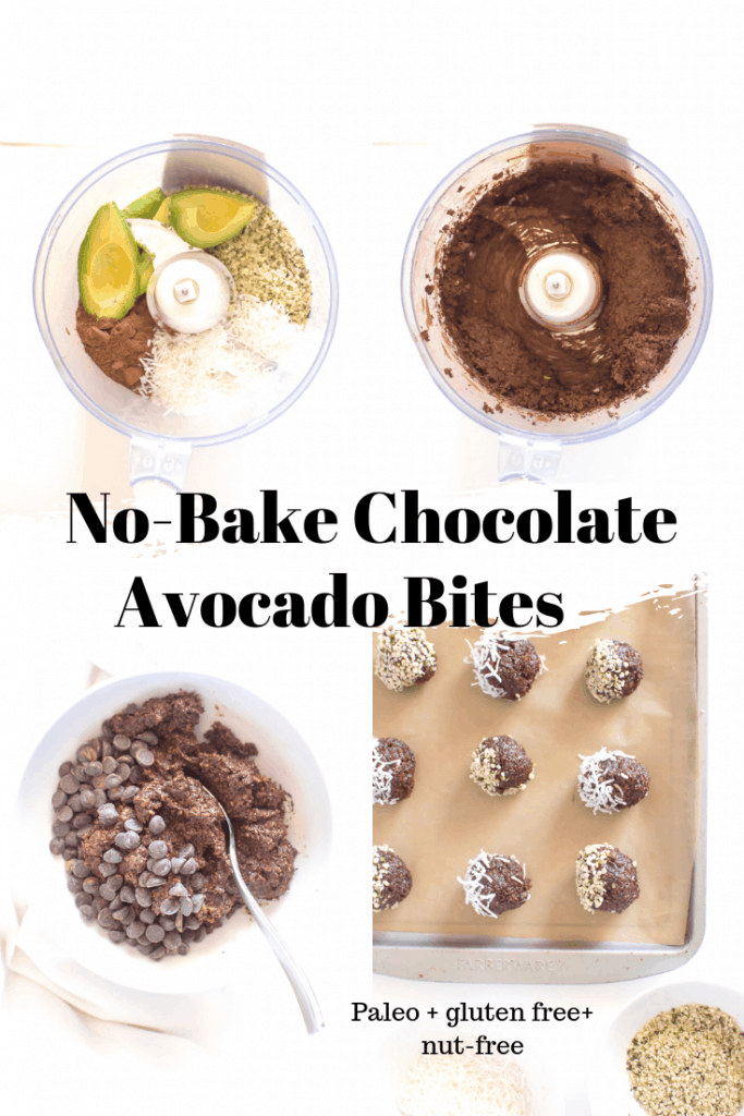 Just 7 wholesome ingredients stand between you and these healthy, no-bake Chocolate Avocado Bites. The perfect healthy treat to whip up when it is too hot to cook. #paleo #vegan #nutfree #dairyfree #glutenfree