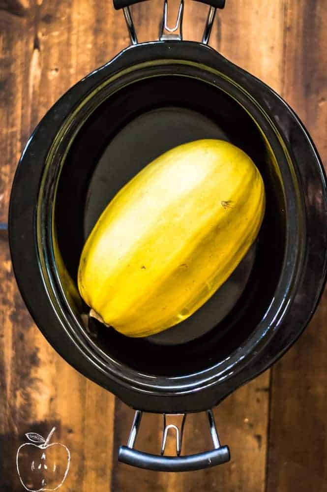 a whole spaghetti squash in a slow cooker