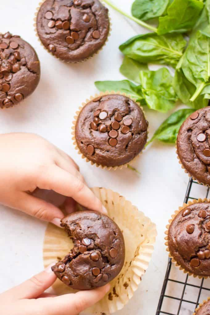 Chocolate veggie-loaded muffins on a cooling rack with spinach scattered around. One muffin has a bit taken out of it and a child's hands are reaching for it.