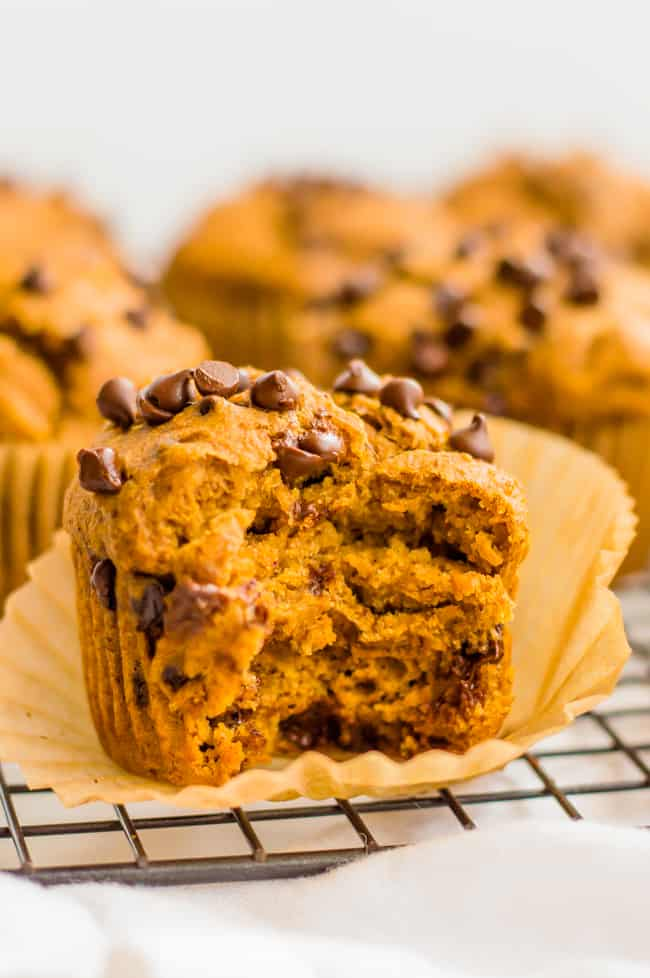 A vegan pumpkin muffin on the cooling rack with a bite taken out of it. Other muffins are in the background.